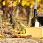 Wine Tours in Greece